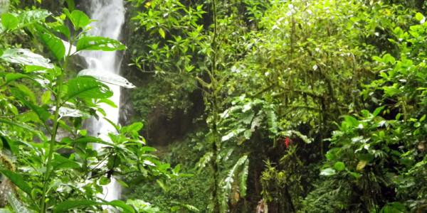 ed-2527s-waterfall